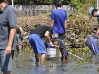 240902南陽幼稚園鯉すくい・鯉とり