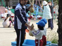 241026南陽幼稚園普段の様子