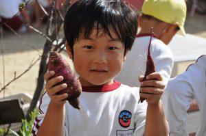 241012南陽幼稚園園庭でお芋
