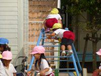 241001南陽幼稚園園庭での様子