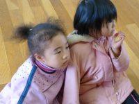 241226南陽幼稚園冬季保育