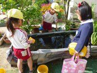 250425南陽幼稚園園庭鯉のぼり