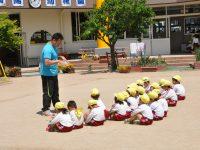 250508南陽幼稚園総合体育指導