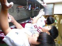 250528南陽幼稚園手洗い