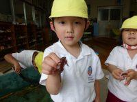 250530南陽幼稚園園庭にて