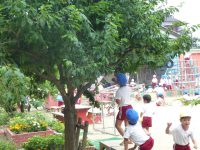250625南陽幼稚園園庭にて