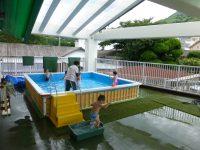 250708南陽幼稚園プール遊び